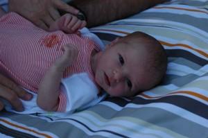 Zev at 12 days old